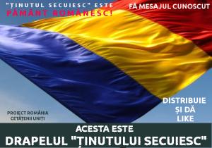 Acesta este drapelul tinutului secuiesc - Proiect Romania